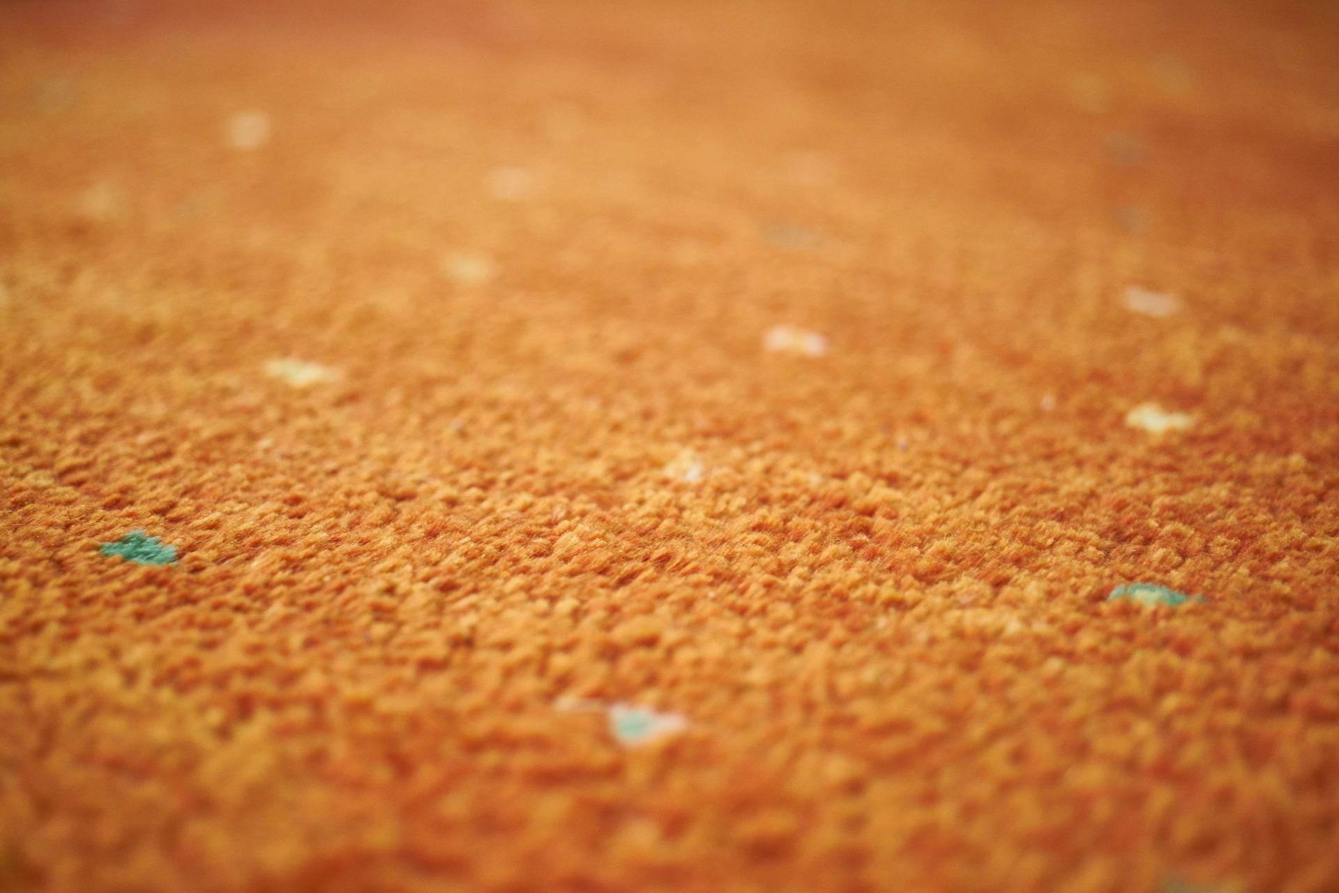 teppichmotten bekämpfen